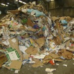 mei2010 133 De orbs in deze papiermassa